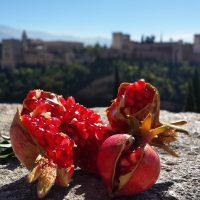 Granada en Granada – Abdullah Hani (Turquía)