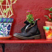 Redescubrir el placer de las cosas pequeñas – Daniel Loddo