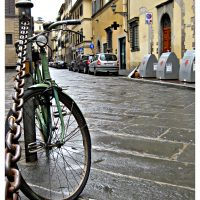 The streets of Florence – Whitney Chadwick